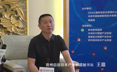 专家访谈:王嘉